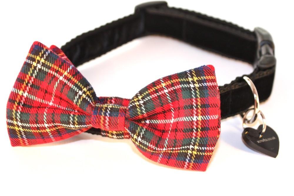 Hamish McHandsome Tartan Bow Tie Designer Dog Collar