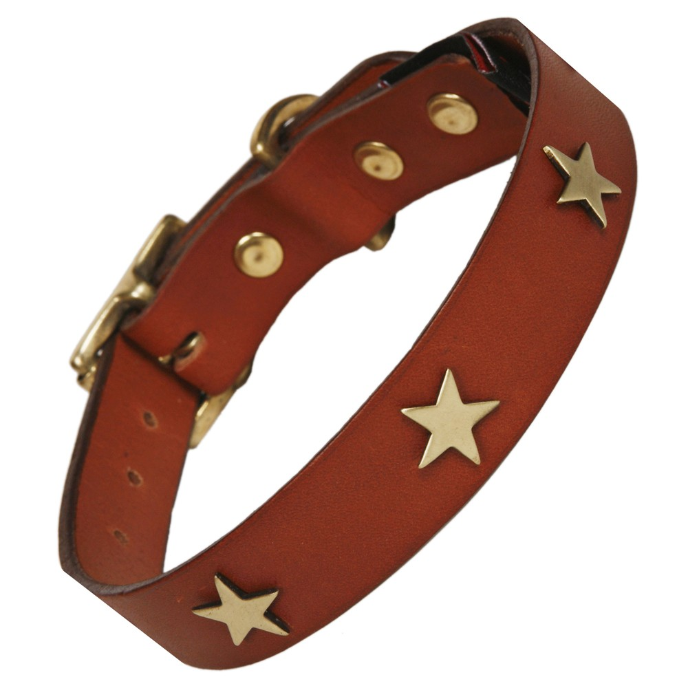 Flat leather dog collars Creature Clothes UK