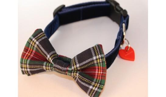 Dougal McHandsome Bow Tie Designer Dog Collar