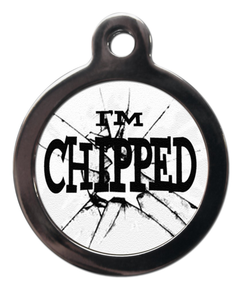 broken glass chipped dog tags