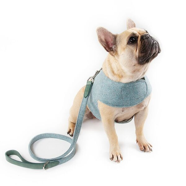 Blue tweed dog harness by Mutts and Hounds