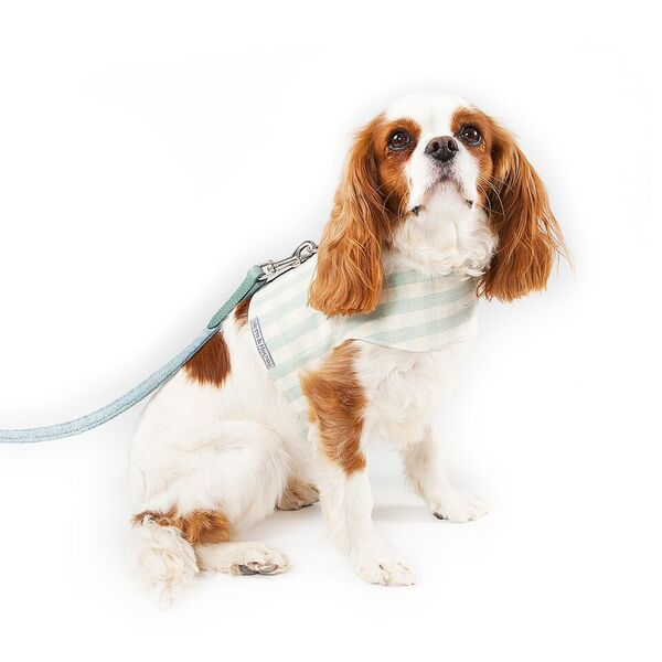 mint check dog harness M&H