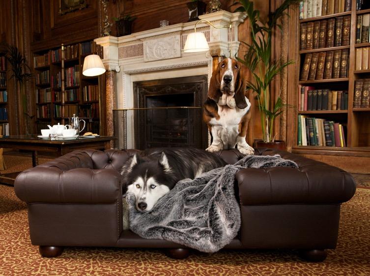 Real Leather Dog Sofas Luxury Dog Beds