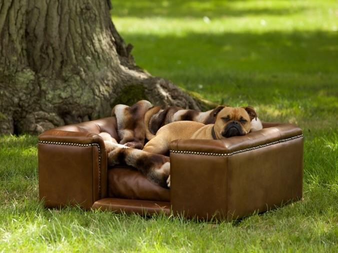 Real Italian Leather Dog Sofa Bed