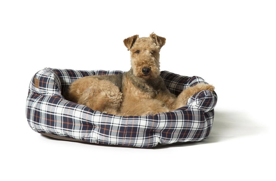 Lumberjack White And Navy Deluxe Slumber Dog Bed by Danish Design