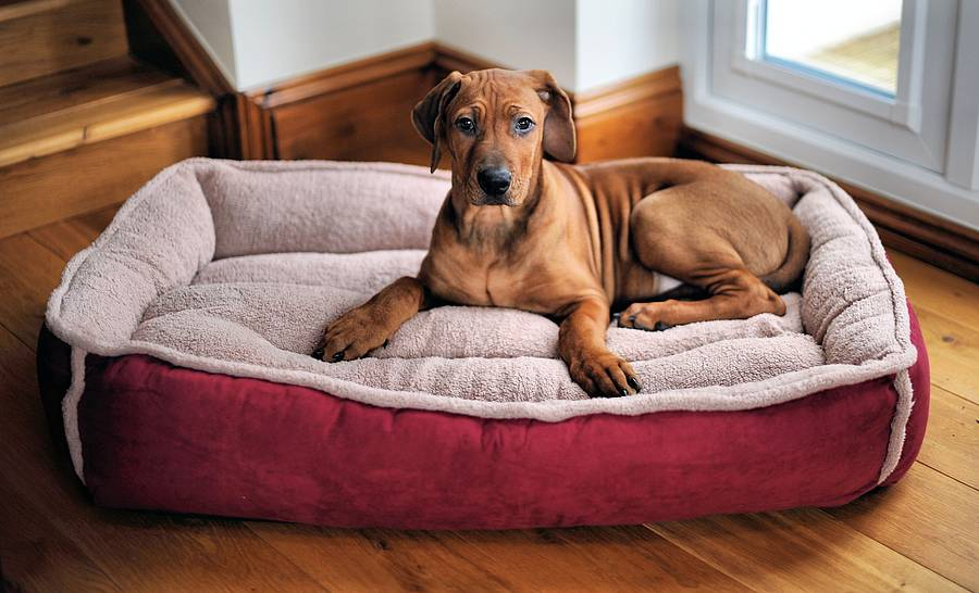 Personalised Winterberry Red Fleece Cradle Dog Bed