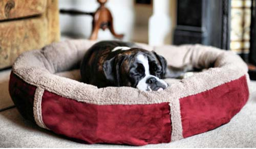 Personalised Winterberry Red Fleece Donut Dog Bed