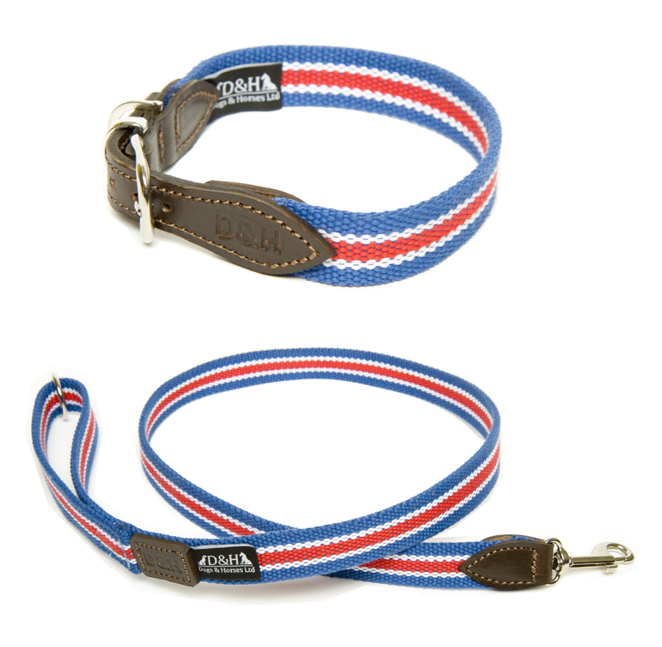 Union Jack Dog Collar and Lead Set