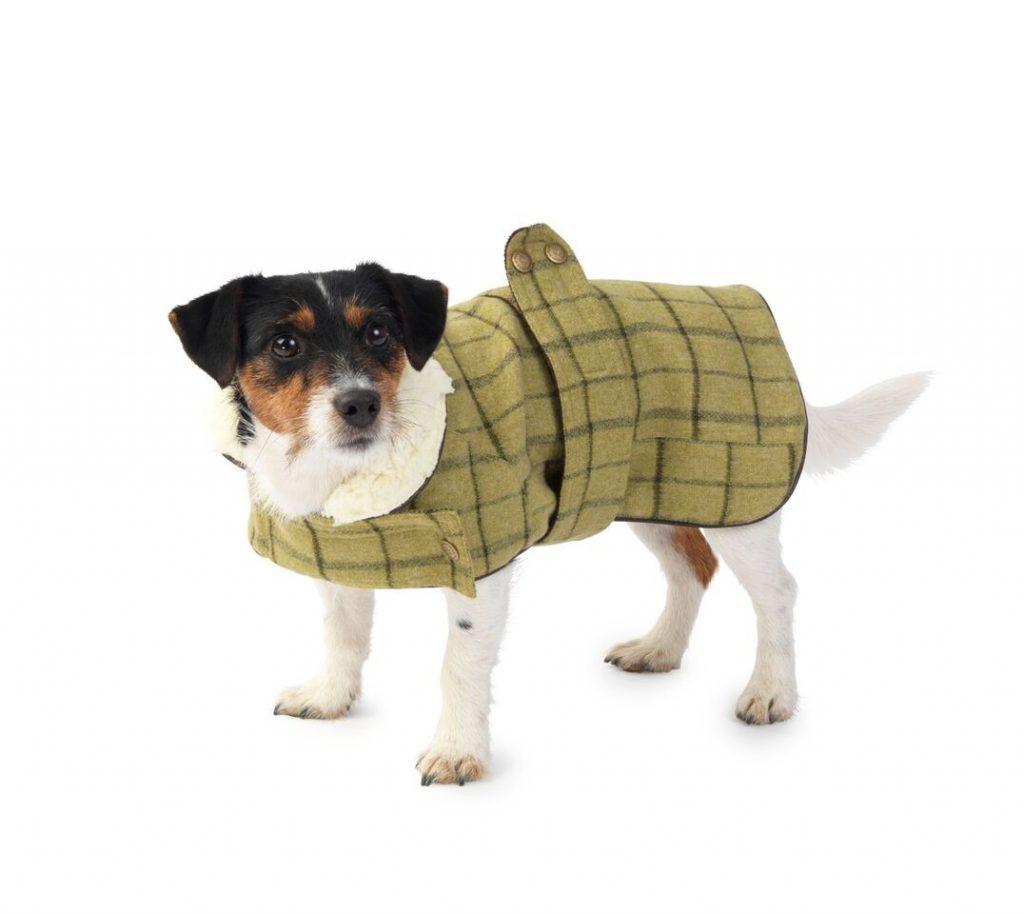 Tweed Dog Coats | Winter Dog Coats