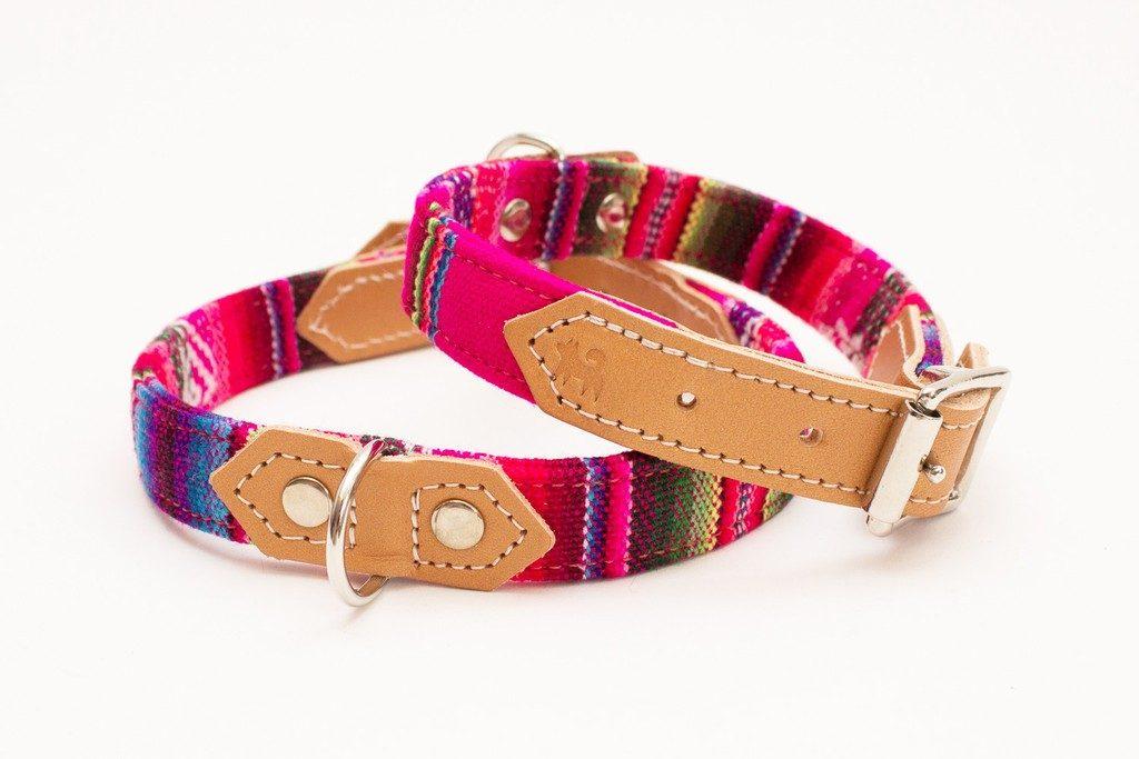 pink collar for vizslas