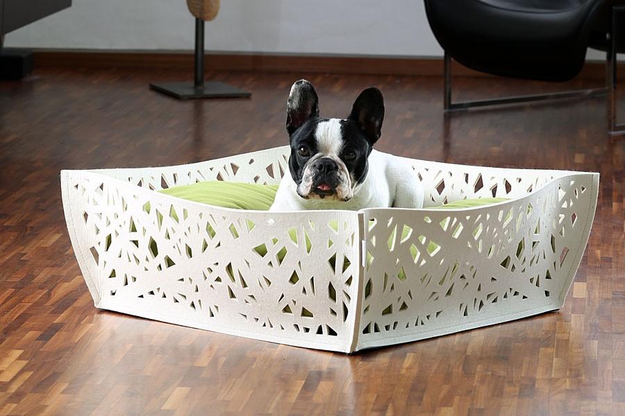 funky orthopaedic dog bed