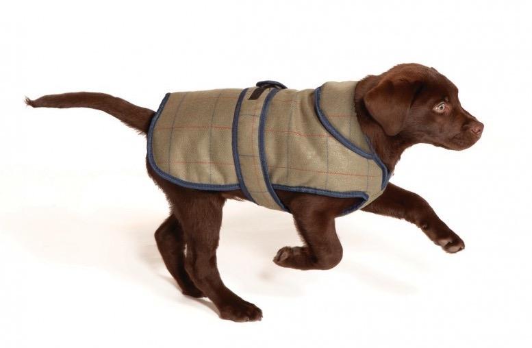 Tweed Dog Coats Winter Dog Coats