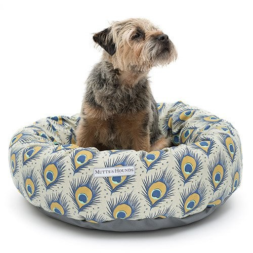 Peacock funky dog beds