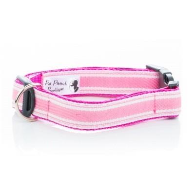 pink vizsla dog collar