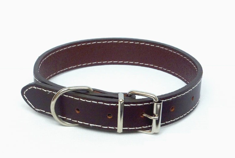 brown leather dog collar for pugs