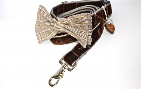 bow tie dog collar and matching lead