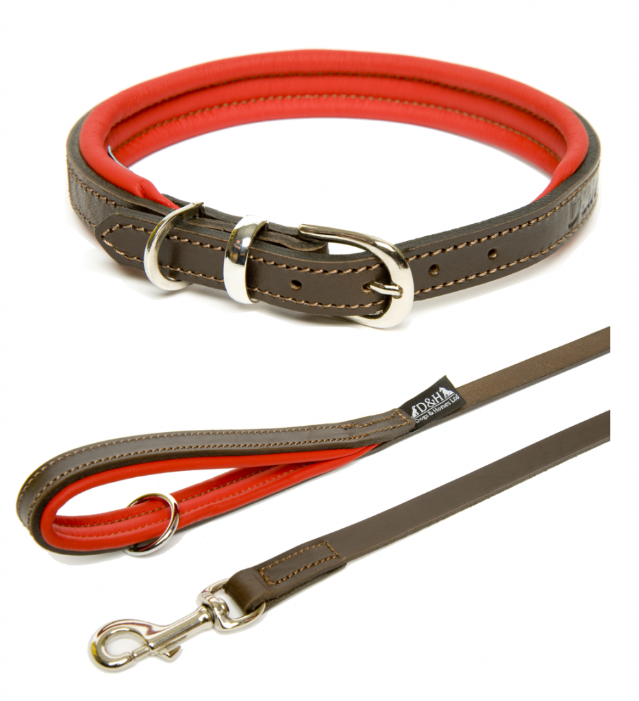 red leather dog collar and lead