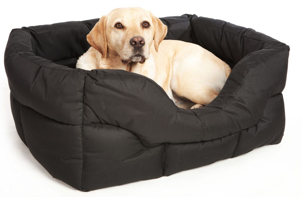 Best beds for gundogs