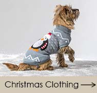 Christmas Dog Jumpers and Accessories