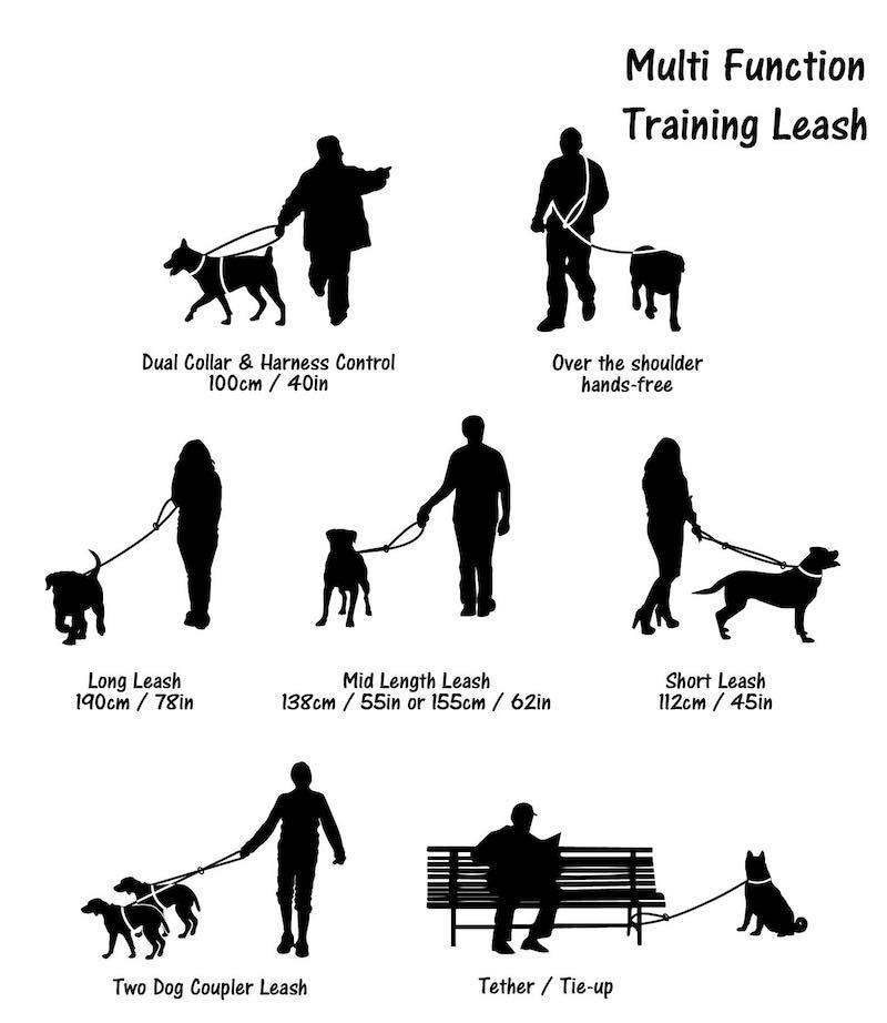 Long Paws Dog Training Lead