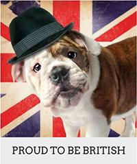 Chelsea Dogs British Company