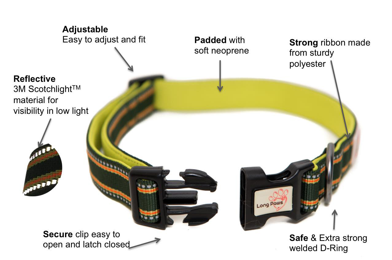 Padded Dog Collars