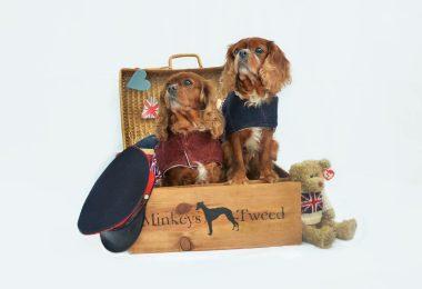minkeys tweed