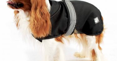 luxury dog raincoats