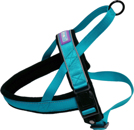 blue padded dog harness
