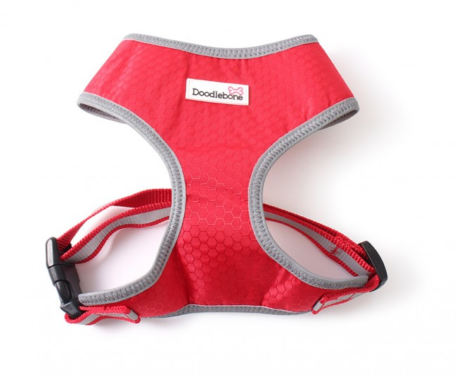 red padded dog harness