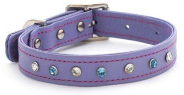 luxury leather purple dog collars uk