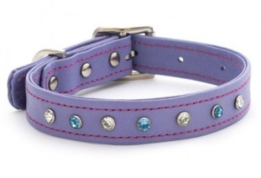 luxury leather purple dog collars uk