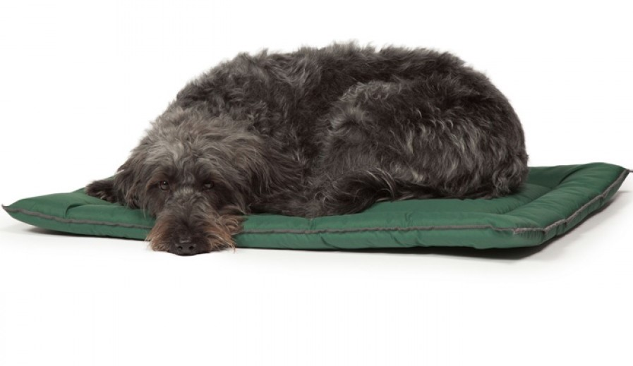 waterproof dog crate bed