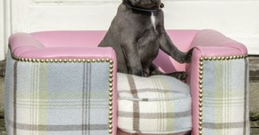 posh dog beds
