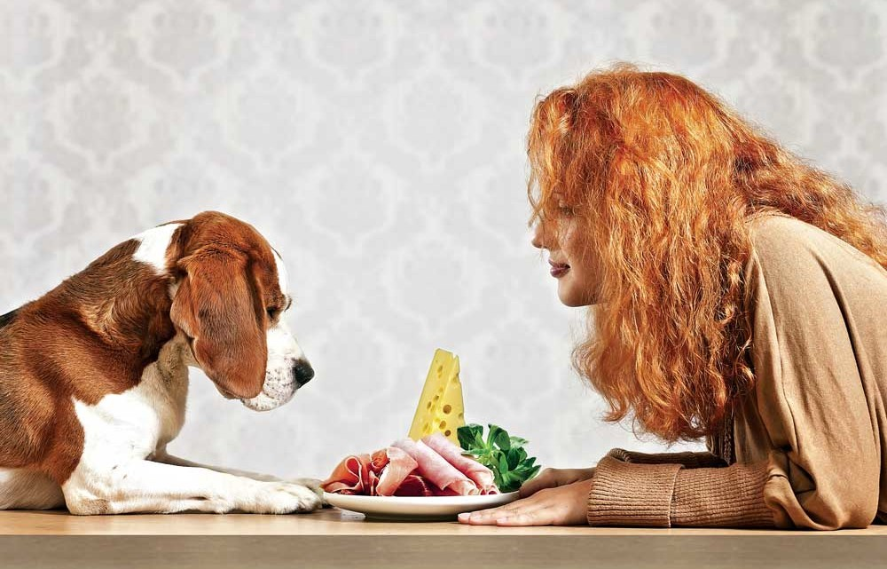 Fatal Foods For Dogs