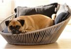 wicker dog beds