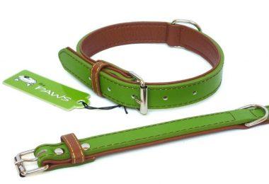 green dog collars