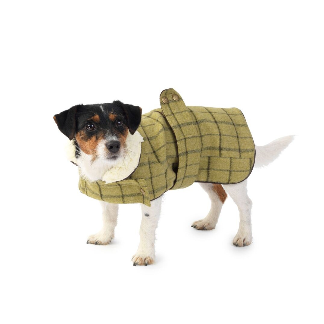 Best Dog Coats In The UK 2013 Chelsea Dogs Blog