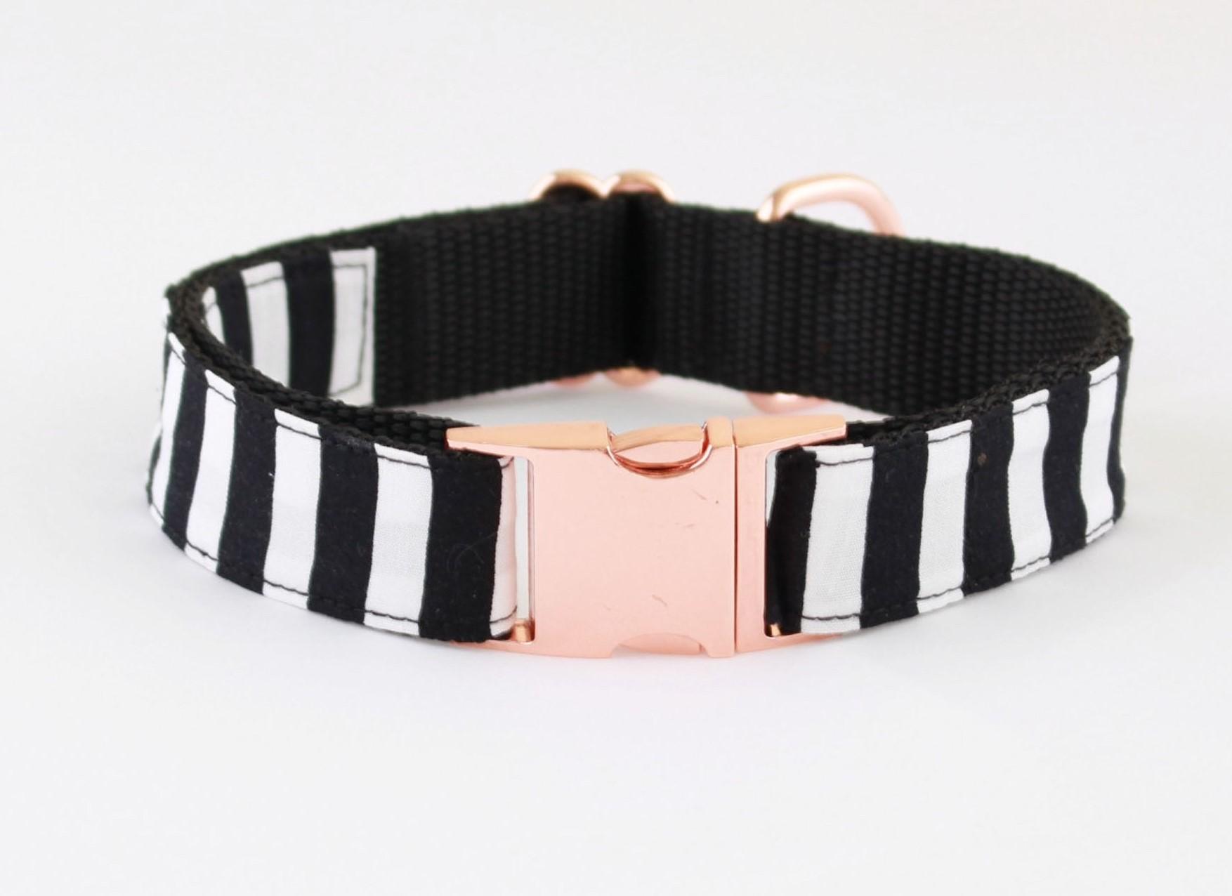 rose gold dog collars