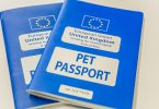 pet passport dogs