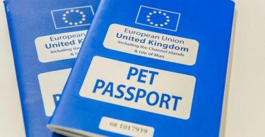 pet passport dogs