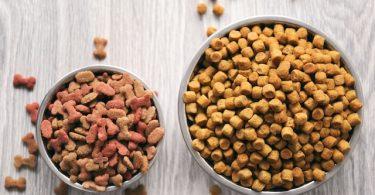 Hypoallergenic Dog Foods