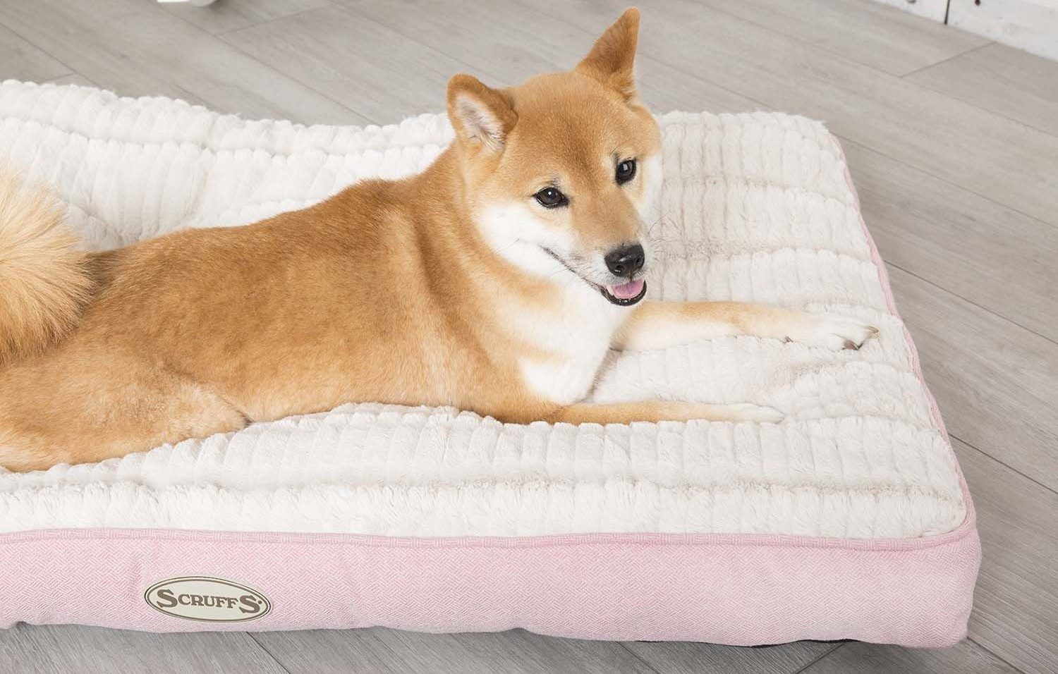 scruffs ellen mattress dog bed