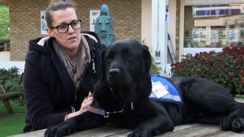 oliver first justice support dog