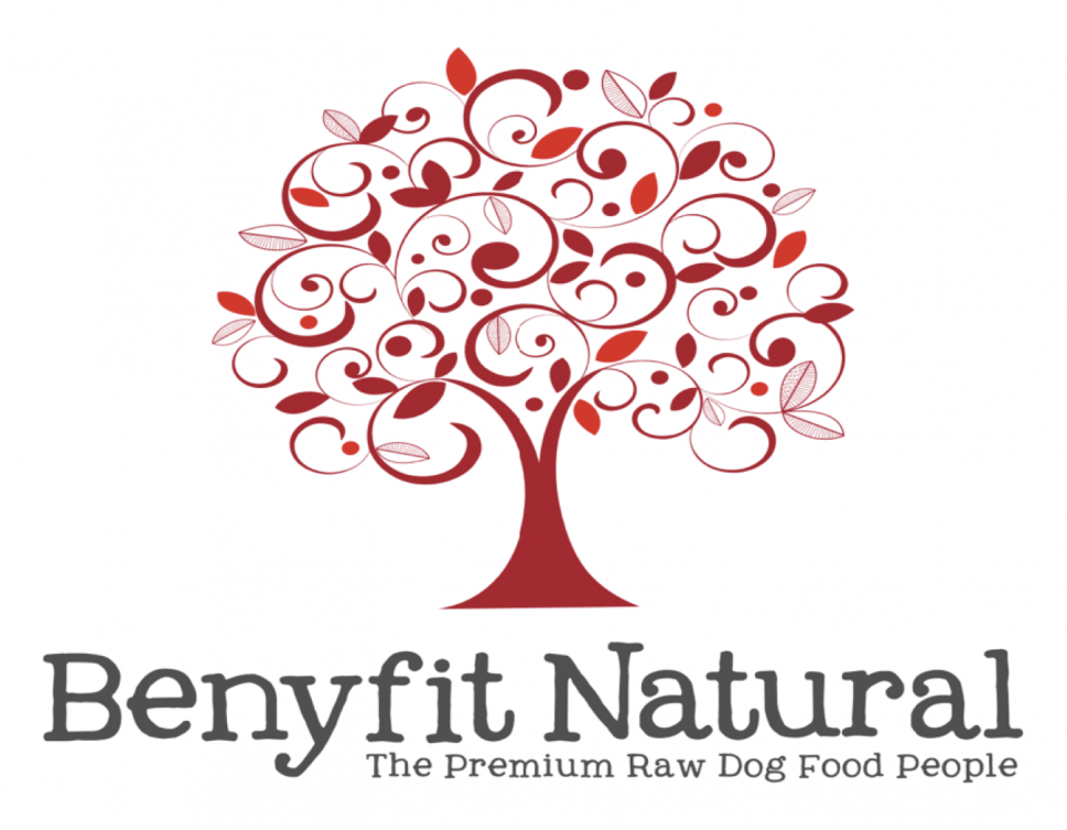 Benyfit Natural Premium Raw Dog Food