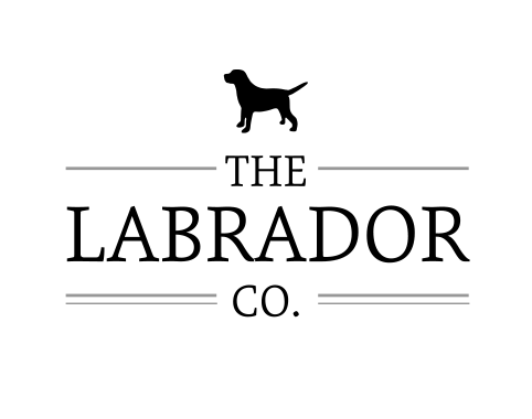 The Labrador Company Luxury Dog Beds at Chelsea Dogs