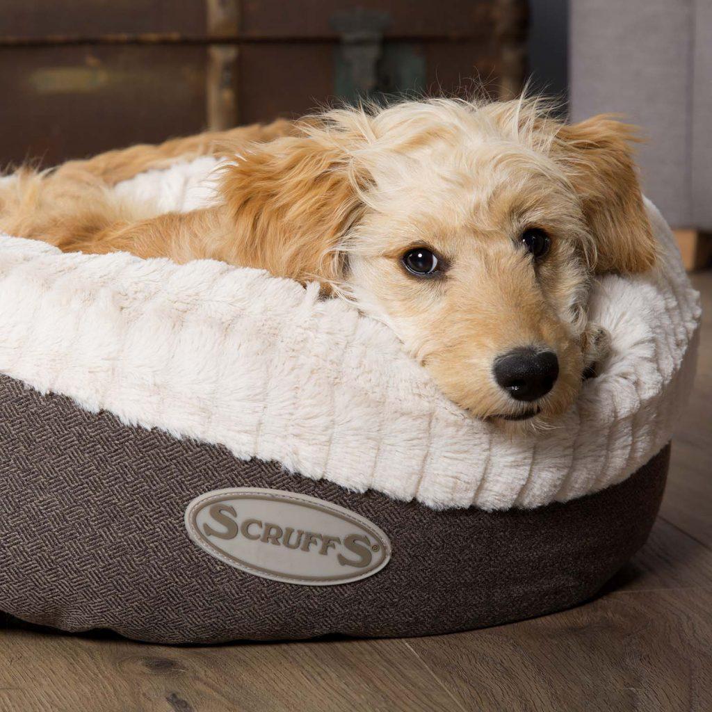 Scruffs luxury grey dog bed ellen