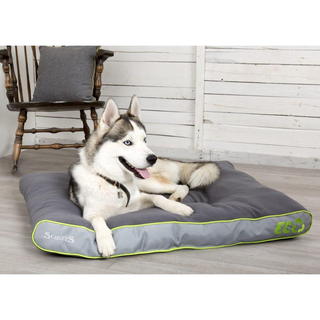 Scruffs Eco Dog Bed Mattress