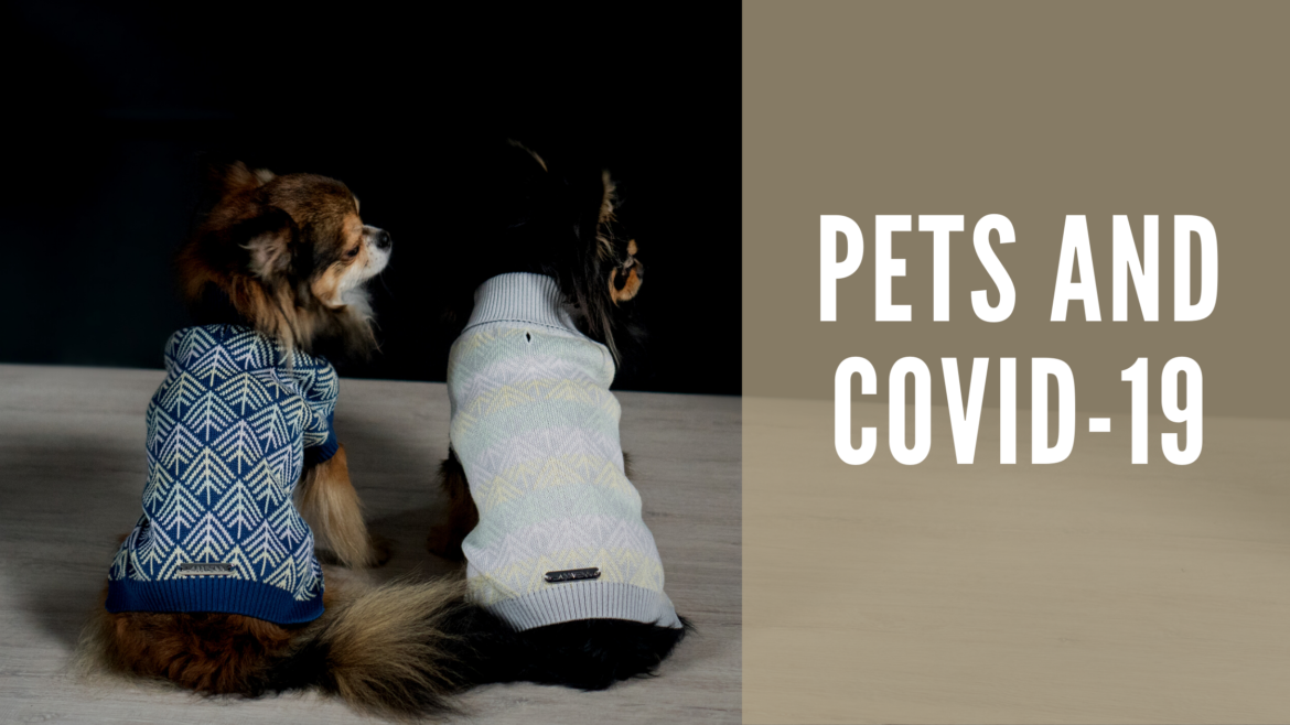 Pets and COVID-19