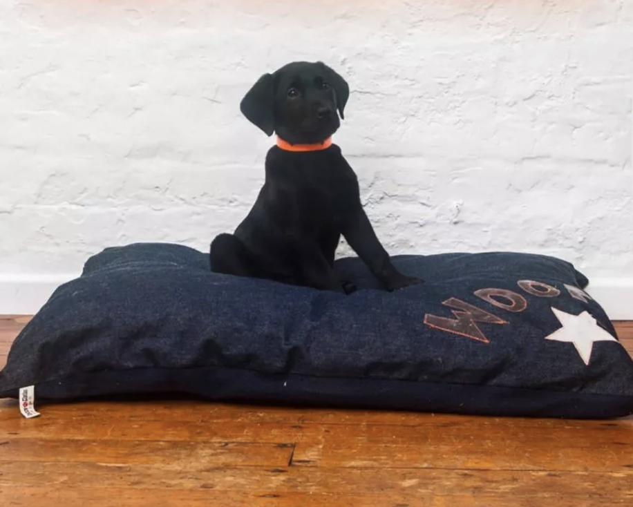 CREATURE CLOTHES DENIM WITH GREY WOOF DOG BED